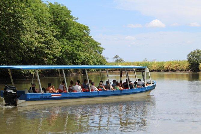 Jungle River Cruise at Palo Verde National Park, Playa Flamingo, COSTA RICA