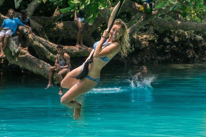 Discover Blue Lagoon, Cascades & Swim with Turtles in Vanuatu from Port Vila, Port Vila, VANUATU