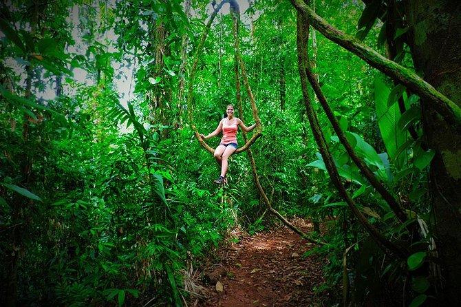 Parque Nacional Piedras Blancas, Puerto Jimenez, COSTA RICA