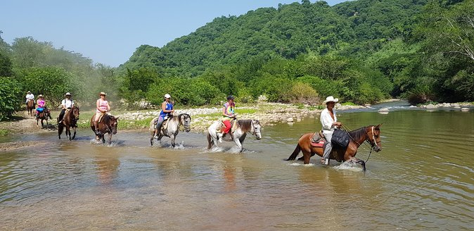 Get ready for a memory making horseback expedition! We will pick you up at your local accommodations in Puerto Escondido. Enjoy the beautiful landscapes of southwest Mexico as we drive north from Puerto Escondido for approximately 30-minutes. Upon arrival at the town of Manialtepec, we will ride gentle/well trained horses into the jungle and to the thermal waters where we will be able to swim/soak in the hot pools. The ride is amazing as it crosses streams and rivers, with views of local wildlife, ranches, sun soaked beaches and sheer cliffs before arriving at our destination. There will also be a small restaurant offering local Mexican fare.