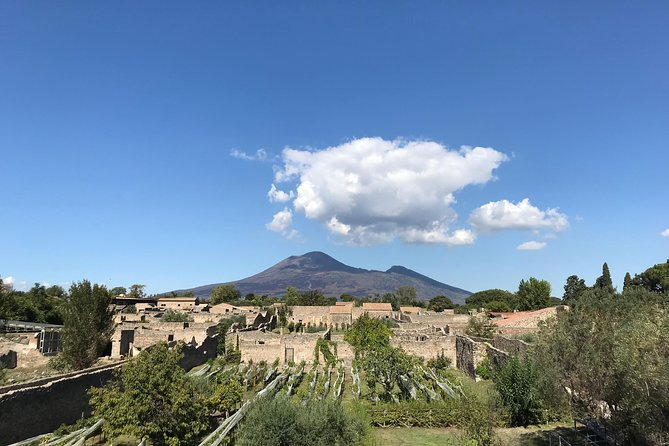 MÁS FOTOS, Pompeii Private Tour with your Archaeologist