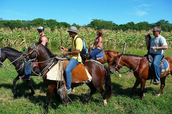 Horseback Riding, Zipline and Hot Springs Combo Tour in Guanacaste, Praia Hermosa, Costa Rica