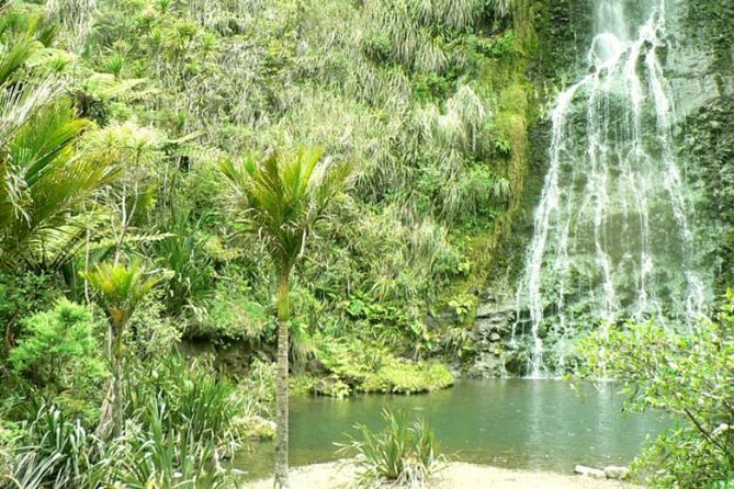 Waterfalls & Wines sightseeing & wine tasting combination day tour, Auckland, NUEVA ZELANDIA