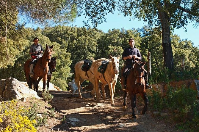 Enjoy the pleasure of spending time in nature by horse back riding in Cadiz.  Riders of all levels can now discover nature by horse in the heart of Grazalema Natural Park, a Reserve of the Biosphere. The ranch where this tour departs from is situated at a crossroads of several paths traversing the Park. The expert guides can help you decide on your riding program.