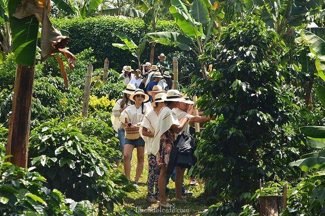Coffe Tour, Medellin, COLOMBIA