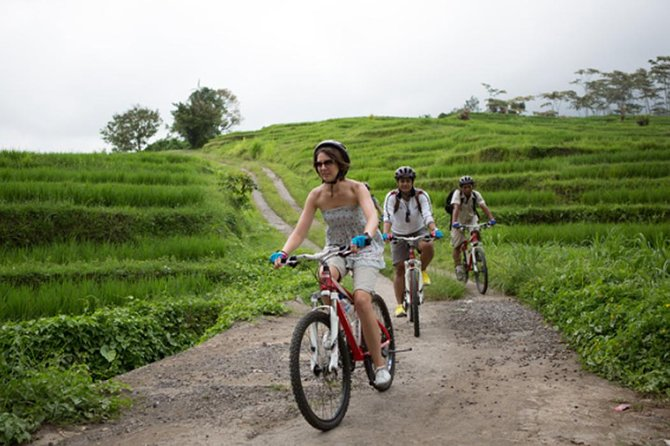 Package Private Tour we offer to you : <br><br>Kintamani volcano downhill cycling, Agrotourism, Goa Gajah Temple. Never missed the beauty of Bali nature has offer. Our friendly Bali Tour Driver always give the best service during the tour with ride the private car.<br><br>Visiting art village arount ubud,Visiting Batu Bulan village, the central of batik, and afterward visiting Celuk Village, the center of gold and silver crafts, and visit Mas Village, a sculpture center and then visiting the Ubud village, the center of craft painting.<br><br>Visiting coffee, chocolate and spice plantations and while drinking coffee and ginger tea, while enjoying a natural village atmosphere, it's free.<br><br>If there is a place that you do not want to visit, immediately talk with the driver to continue the next trip. the satisfaction and comfort of your trip is our goal<br><br>Make this tour package your choice. You will get an unforgettable personal experience. BOOK NOW