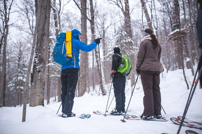 Quebec Ski-Shoeing Excursion, Quebec, CANADA
