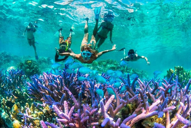 BALI BLOO LAGOON BEACH IS A UNDERWATER PARADISE AT EAST BALI AND PERFECT PLACE FOR DO ACTIVITY SNORKELING<br><br>Blue Lagoon Snorkeling East Bali This tour the most popular for those who want to enjoy the Bali paradise under water life's.<br><br>This Place is located at the eastern part of Bali and very close to the Padang bay harbor,it's take  about 1 hour drive from kuta area<br><br>Experience the Beauty of under water life's with thousand of many kinds Fish ,Beautiful coral , and other life's at Blue lagoon and Tanjung Jepun bay <br><br>As you have to expect to come there is Load to see including angel fish,Butterfly fish,parrot fish,lion fish and so much more.<br><br>we will serve you with Lunch  on the restaurant Back at the beach with the wonderful views of the east coast of Bali and The Island of Nusa Penida<br><br>Tour is limited to a maximum of 15 travelers. Small group.