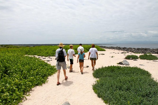 This full-day tour to Seymour North Island is perfect if you want to see wildlife and enjoy the nature.<br><br>Fauna Highlights: Land & marine iguanas, frigatebirds, blue-footed boobies, sea lions; snorkeling: rays, reef sharks, fish, garden eels