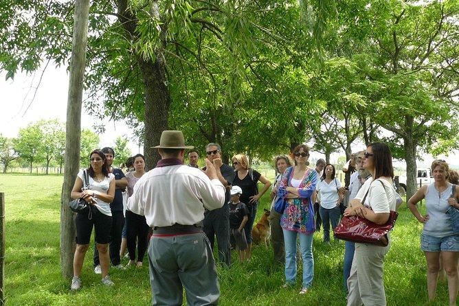 Estancia Gaucho Day at El Ombu de Areco from Buenos Aires, Buenos Aires, ARGENTINA