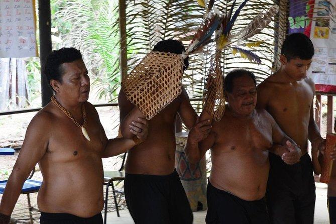 Tucandeira Ants Indigenous Ritual, Manaus, BRASIL