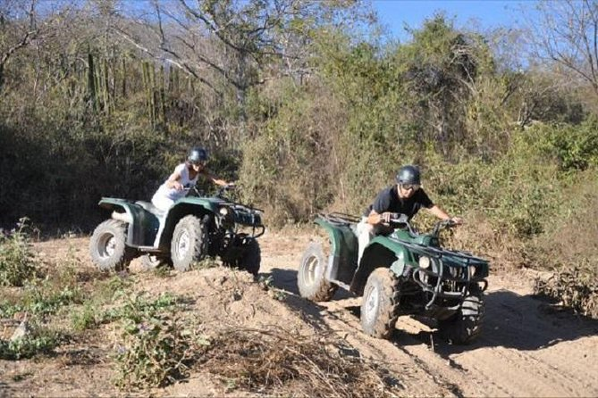 Let the adrenaline flow with this exciting all-terrain adventure! Discover the marvelous landscapes of the mountainous area of Mazatlan aboard an ATV, and be amazed by its great diversity of flora and fauna.
