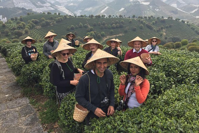 MÁS FOTOS, Private Tour-Yangshuo Seven Fairies Peak tea plantation and Xianggong hill