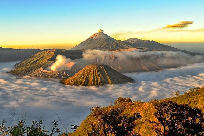 1 day Bromo Private Tour is suitable to traveller who doesn't has much time in surabaya/malang. within 1 day start in the morning you will explore one of the most stuning nature and mountain.<br><br>if you think sunrise tour would be too tiring,this tour is best option for you.<br><br>Our private and proffesional tour guide will pick you up with our private comfortable car at any locations in surabaya/malang/Probolinggo at 8am. Explore Bromo and Madakaripura waterfall in the same day, its a private tour you have chance to add or change the destinations that you might interest in the same direction/nearest area