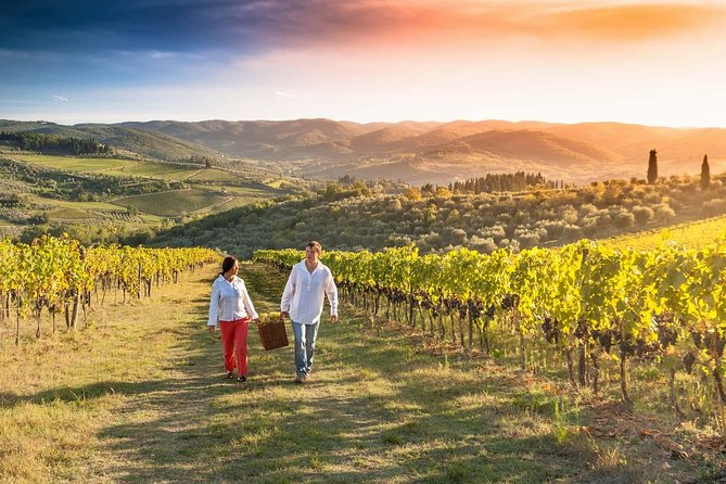 Great wine tour in Tuscany From Florence, Florencia, ITALIA