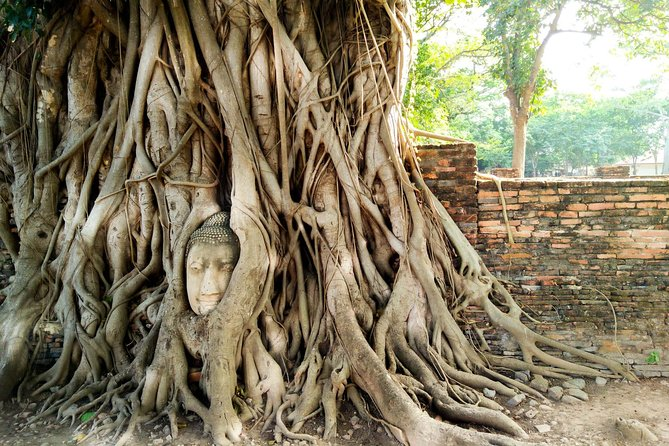 Private Tour: Full Day Ancient City of Ayutthaya and Lopburi, Bangkok, Tailândia