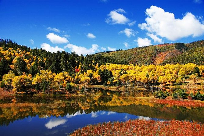 Today,you will visit to the PudacuoNational Park in Yunnan and pay a visit to Tibetan family. A private vehicle,a private English-speaking tour guide, one lunch,entrance fee,hotel pick-up and drop-off are included in the one day trip.
