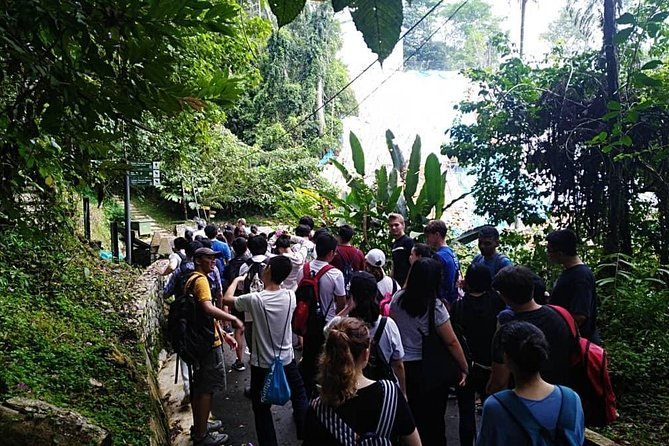 In this guided tour, we will visit to 3-4 main attractions inRound Penang Island: <br>1. Pick up and drive toNational Park (Ride:45 mins). <br>2. Tourfishing village and jetty. See fishermen as they go about their daily lives and their boat docking at the jetty.<br>3. Visit handicraft center for hand drawn batik (Ride:5 mins). See handmade batik craft being transformed from a white piece of cloth to a masterpiece by master craftsmen. Buy a piece or two as souvenir for loved ones at home.<br>4.Fruit stall (Ride:15 mins) orNutmeg factory (Ride: 20 mins). Learn about all Malaysian tropical fruits that are in season. Sample some spices and see them in the original form.<br>5. Snake Temple (Ride: 20 mins). See live Pit Viper snakes coiled up at temple. Not for the faint heart as these highly venomous snakes are alive and kicking. <br>6.Drop off atdestination (Ride: 30 minutes).
