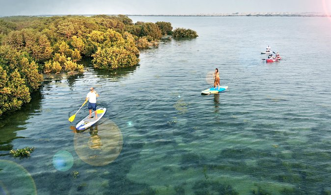 Put your balance and strength to the test on a standup paddle board/Kayak whileexploring the beauty of the mangrove ecosystem.Glide over shallow clear waters withrays,turtles andmarine life.