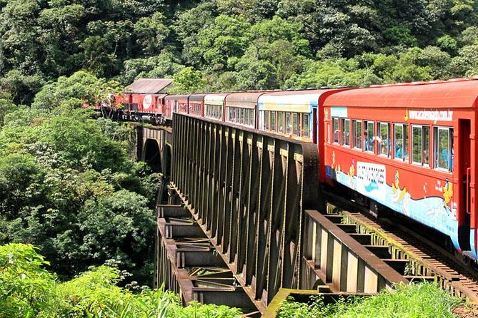 Elected among the ten most beautiful train rides in the world. Embark on the Serra do Mar's train and discover the charm of the largest preserved area of Atlantic Forest in Brazil!