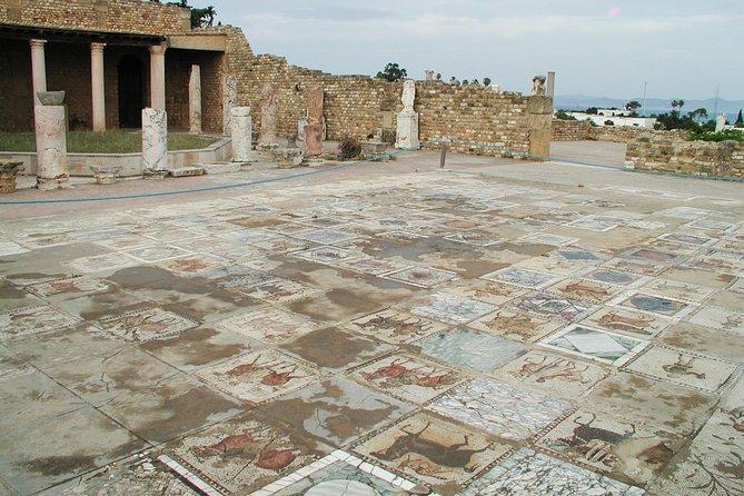 Excursión de día completo de Cartago, Sidi Bou Said y Museo de Bardo desde Túnez, Tunez, TUNEZ