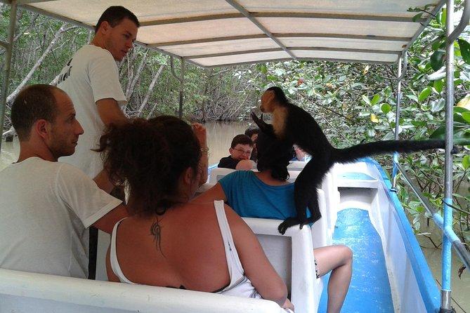 Damas Island Boat tour, Quepos, COSTA RICA