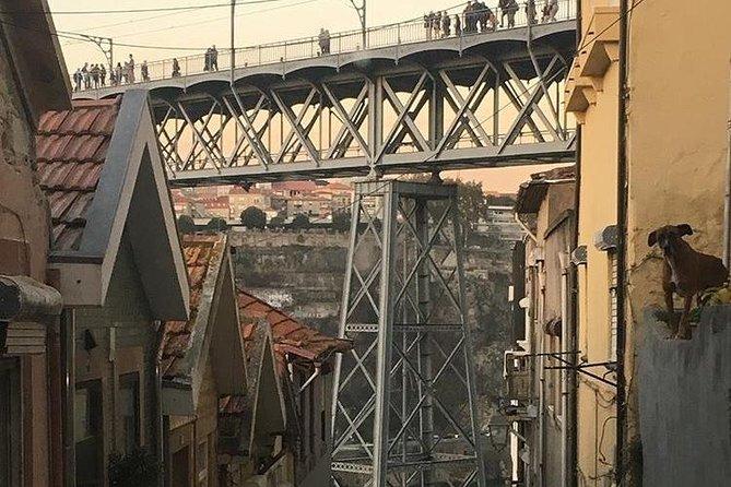 Recorrido de día completo con cata de vinos para grupos pequeños por la ciudad de Oporto y crucero por el río Duero, Oporto, PORTUGAL