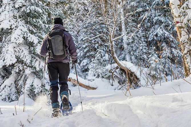 Snowshoeing Tour in Jacques-Cartier National Park, Quebec, CANADA