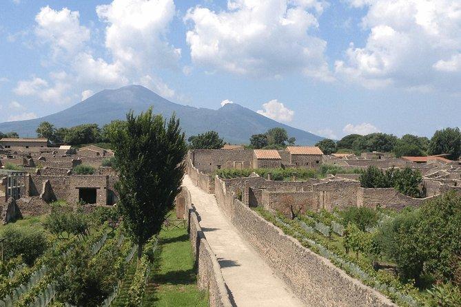 Passeio de um dia por Pompéia e Herculano saindo de Nápoles, Nápoles, Itália