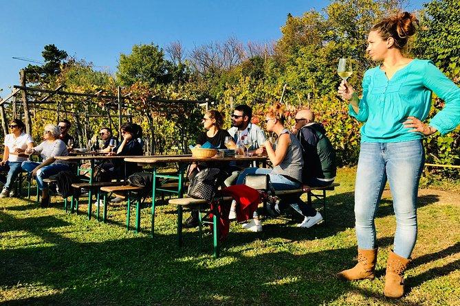 Prosecco Origins Wine Experience, Trieste, ITALIA