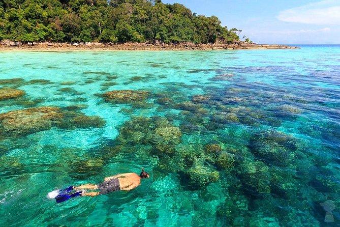 MÁS FOTOS, Snorkel Tour to Surin Islands by Fantastic Similan Travel from Khao Lak