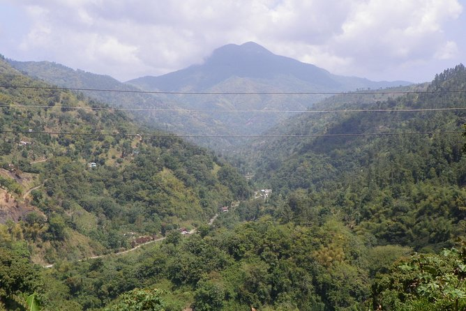 The Blue Mountain Peak is the highest mountain peak in Jamaica and one of the highest in the Caribbean. The elevation is 7,402 / 2,256 meters with beautiful and breathtaking views. Take this private tour to Blue Mountain and experience nature at it's best.