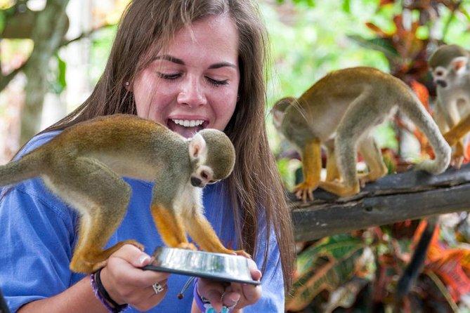 Aventura en Monkeyland y en tirolina desde Punta Cana, Punta de Cana, REPUBLICA DOMINICANA