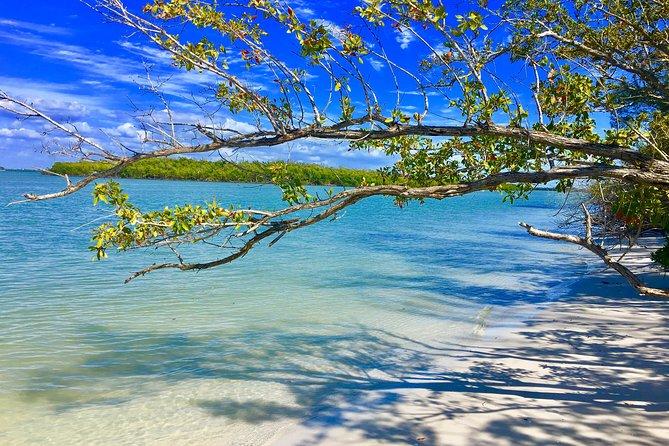Ten Thousand Islands Adventure Boat Tour, Naples, FL, ESTADOS UNIDOS