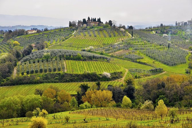 Enjoy a full day discovering thejewels and landscape of the Tuscany. ExploreSiena, the UNESCOlistedvillage of San Gimignano and enjoy a typical lunch and wine tasting.<br><br>The village of San Gimignano, the Chianti area and the Medieval town of Siena are situated in the heart of our beautiful Tuscany, and are all compelling stops for those who want to learn about the region's history and traditions. The tour continues to the splendid area of the Chianti Classico. We will stop by a typical Tuscan winery where you will visit the cellars and vineyards. Afterwards you will taste the wine produced, which will be accompanied by a delicious Tuscan lunch consisting of typical food such as pasta, cured meats, cheeses and local pastries. In the afternoon the tour continues with sightseeing in Siena. You will have the chance to admire the magnificent Cathedral and the Town Hall in the Piazza del Campo, scenery of the world famous Palio horse race.