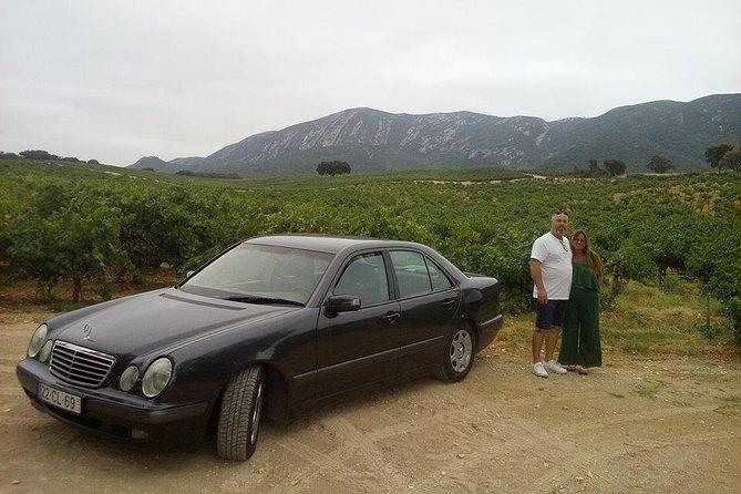 Recorrido vinícola de lujo en la Arrábida - Privado, Distrito de Setúbal, PORTUGAL
