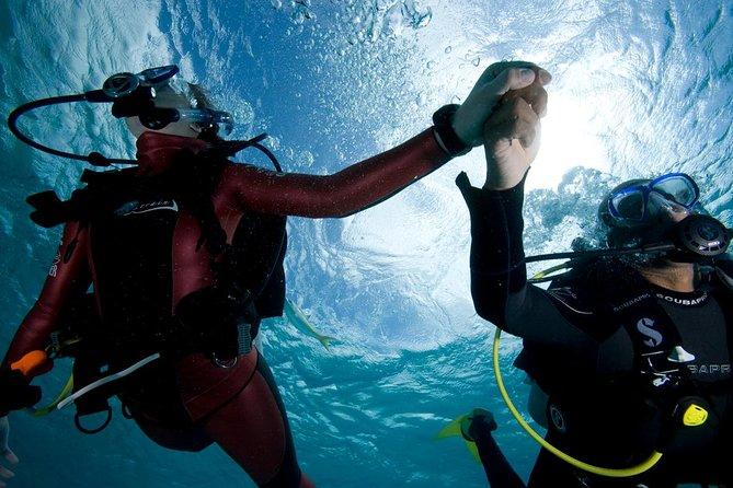 Small-Group Beginners Scuba Diving Experience in Gran Canaria, Gran Canaria, ESPAÑA