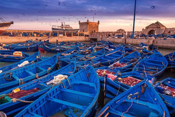 Discover Essaouira In One Day Trip from Agadir, Esauira, Morocco