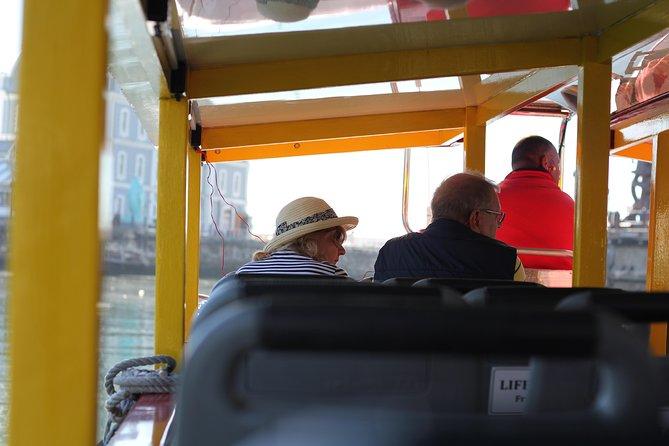Cruzeiro turístico de 30 minutos na Cidade do Cabo com comentários em tempo real, Cape Town, South Africa
