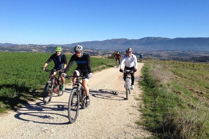 Taste & Bike around Todi, local guide and e-bike included, Perugia, ITALY