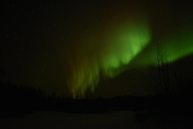 Arctic Circle and Northern Lights Tour from Fairbanks, Fairbanks, AK, ESTADOS UNIDOS