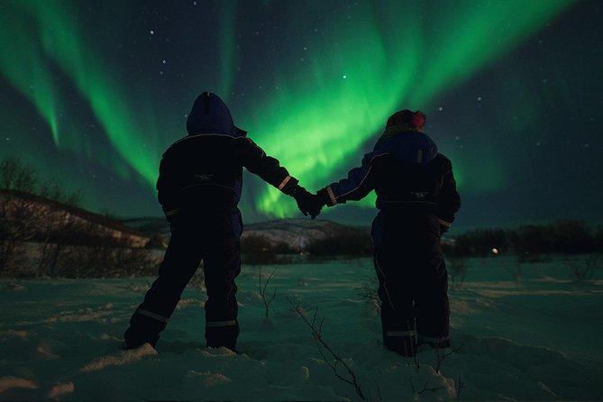 Recorrido en minibús para ver la aurora boreal, Tromso, NORUEGA