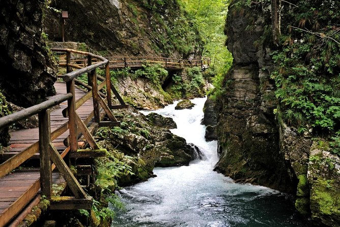 Private Experience: Lake Bled & Ljubljana- 8 hrs Shore Trip from Koper (up to 7), ,