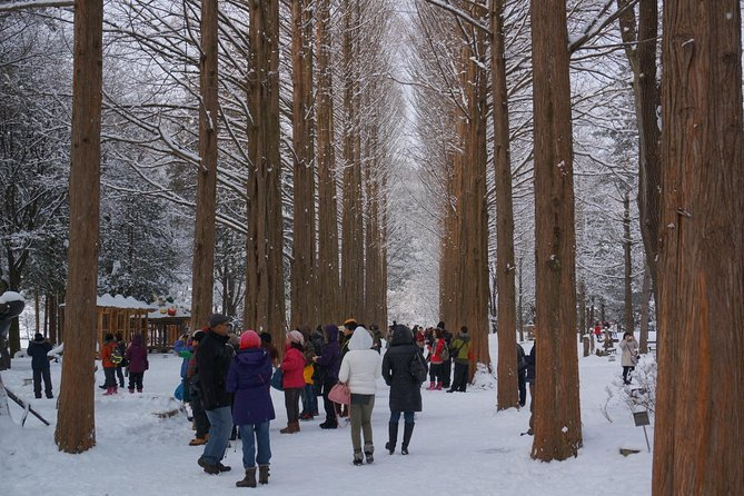 We bring you to Nami Island and Petite France or The Garden of Morning Calm, Which is very famous for the K-drama making and its own scenery<br><br>• Hotel Pick up and Sending, Entrance Fee(Nami Island and Petite France)&Lunch is Included<br><br>• Fluent English speaking Driving Guide will lead you to Nami Island and Petite France or The Garden of Morning Calm<br><br> • Pick up from Tourist hotel & Sending to Tourist hotel<br><br> • Can listen to all the useful information such as politics, religions, society, culture and nature of Korea while traveling from full of knowledgeable driving guide