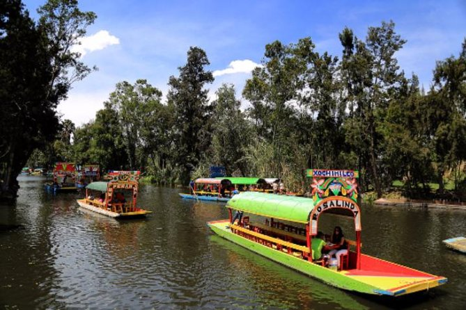 MORE PHOTOS, XOCHIMILCO & COYOACAN (Private)