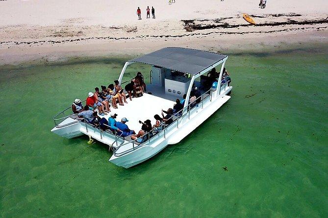 MÁS FOTOS, Private Catamaran Snorkeling Adventure from Punta Cana