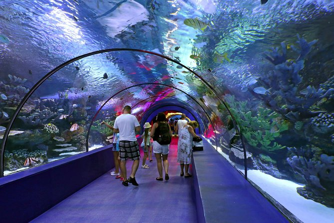 "A trip to 1 of the biggest oceanarium in Europe. Walk in the water tunnel full of sharks and other fish. If you choose ""full day"" option you will also see beautifull Antalya cliffs and waterfall and visit the medieval  old town of Antalya."