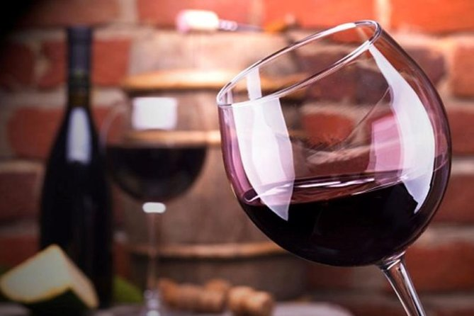 Malbec Experiece Wine Full-Day Tour to Mendoza from Buenos Aires, Mendoza, ARGENTINA