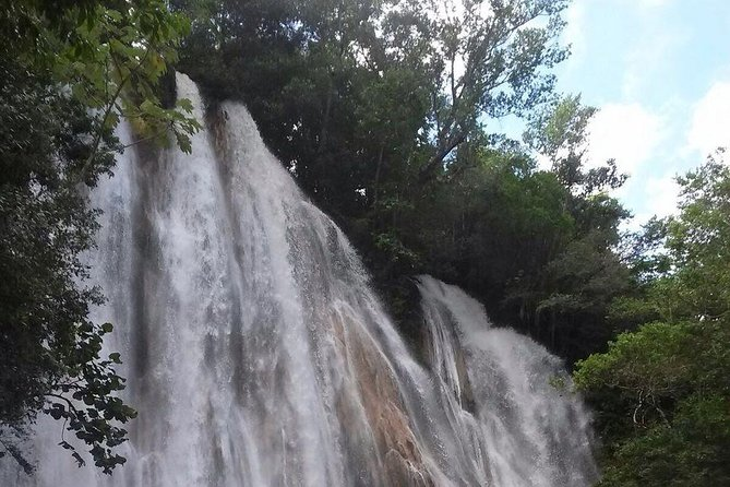 Cascada Limon Samana Tropical Forest ,it is an excursion for people love to exploring the nature al hava also an espirit of adventures.<br><br>this it is a Tour full day we pick you up directly at hotel reception any where in Samana peninsula, to let you enjoy the samana inside jungle, we go by bus from hotel to the horse ranch ,after recive a safe breifing about how you can ride your horse the it gets horse back ride through roud of adventures under the shade of the majestic forest.