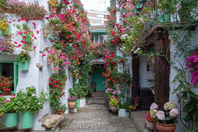 Private Walking Tour of the Patios of San Basilio in Cordoba, Cordoba , ESPAÑA